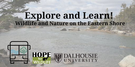 Explore and Learn! Wildlife and Nature on the Eastern Shore