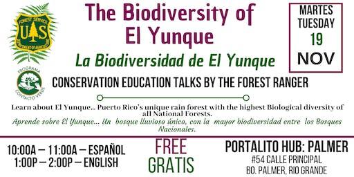 El Yunque Biodiversity / La Biodiversidad de El Yunque