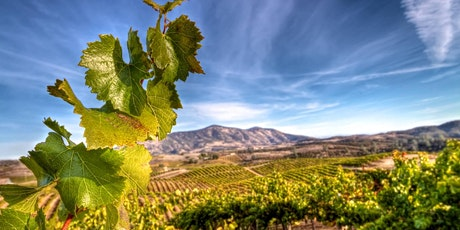 28th Annual Monterey Winemakers' Celebration tickets