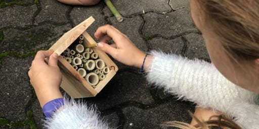 Green Living - Bee Aware for Families, making an insect hotel.