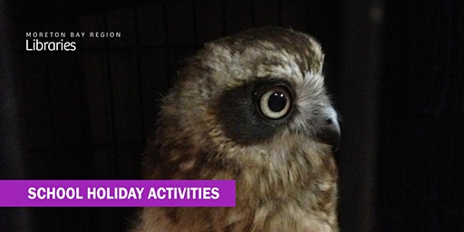 Birds of Prey (all ages) - Arana Hills Library