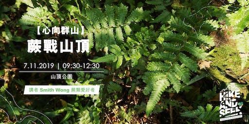 【心向群山】 「蕨」戰山頂 (Cantonese only)