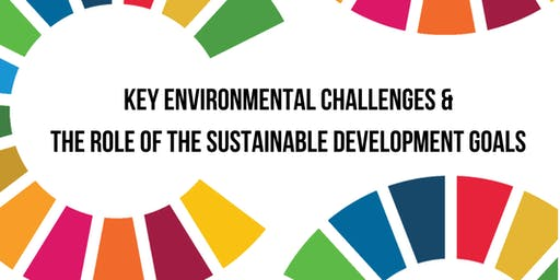 Key environmental challenges & the role of the  SDGs
