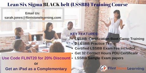 Lean Six Sigma Black Belt(LSSBB) Certification Training in Columbia, SC