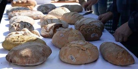 Open Forno: Hai mai desiderato cuocere il tuo pane in un forno a legna? tickets