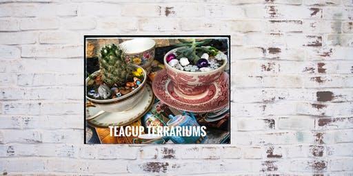 Teacup Terrarium Art: Design & Create a Whimsical, Succulent Garden.