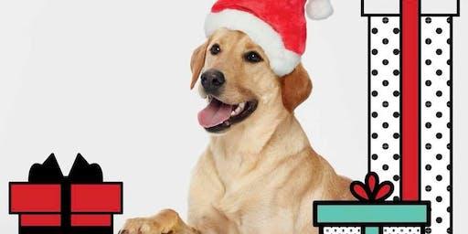 Pet Photos with Santa