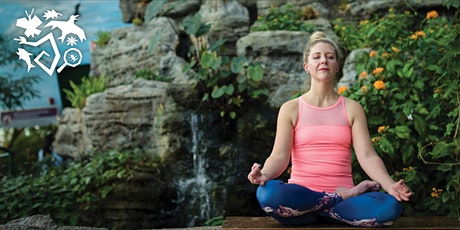 Butterfly Haven Yoga tickets
