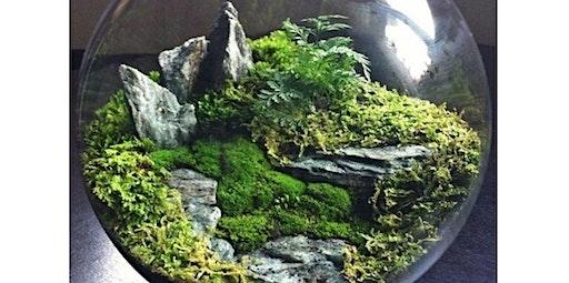 Making Moss Gardens! (2020-01-30 starts at 6:00 PM)