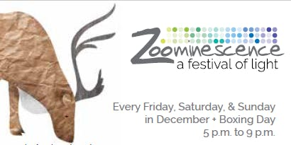 Zoominescence 2019 & Animal Attraction (Nov 29) at the Edmonton Valley Zoo