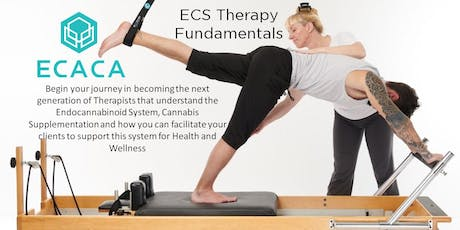 ECS Therapy - Medical and Assessment Protocols for Accreditation tickets