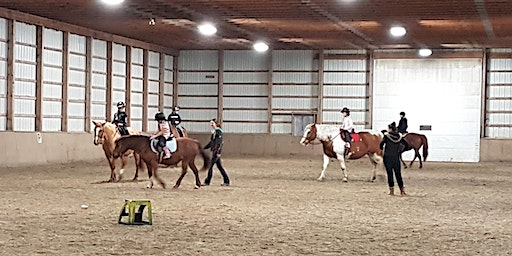 Winter Introductory Riding Program 2020: Discounted semi-private lessons!