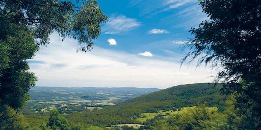 Yarra Valley Summer Retreat
