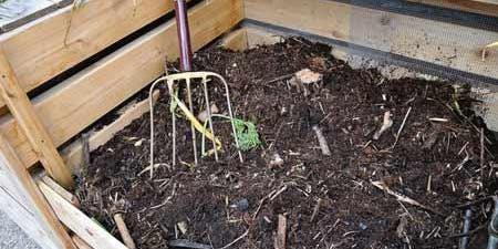 Soils and Composting Workshop: Sunday November 24th