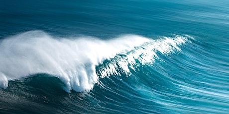 Surfing tickets