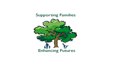 Applying the SFEF Approach in Practice Lunchtime Learning Sessions for Social Workers  tickets