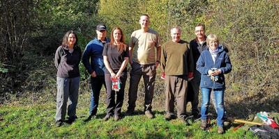 Conservation Work Party - Salcey Forest, Nov 2019