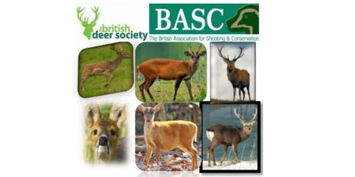 Talking Stalking Evening 2019 - with BASC & BDS - Dorset