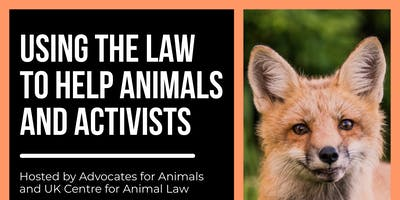 Using the Law to help Animals and Activists