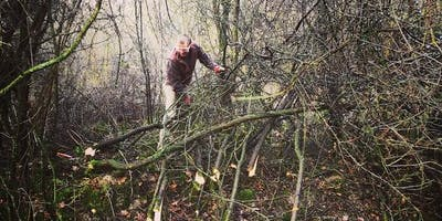 Conservation Work Party - Salcey Forest, Jan 2020