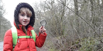 Brown Hairstreak Butterfly Egg  Search and Children's Spotters Trail