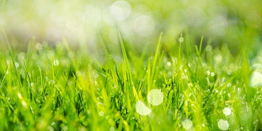 Spring Lawn Tune Up - Jessie Brock Community Center