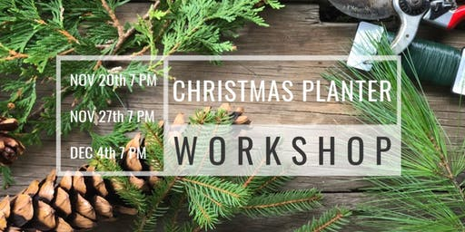 Christmas Planter Workshop w/ Wildbee ($95, includes decorative container)