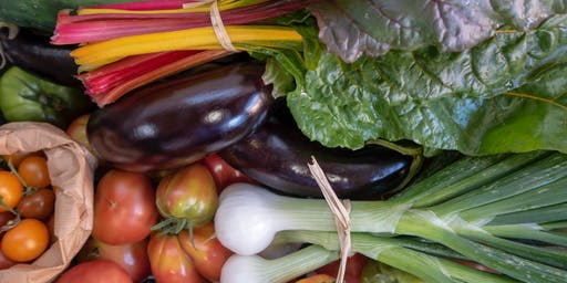 12 Months of Vegetable and Fruit Gardening? Yes, You Can!