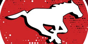 Go Stamps Go!  A Fan History of the Calgary Stampeders