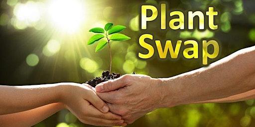 Plant Swap: Dirty Santa Edition