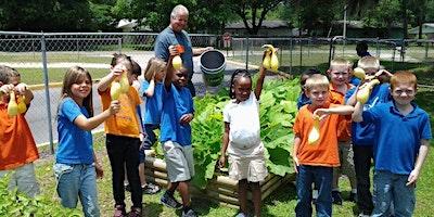 Children in the Vegetable Garden