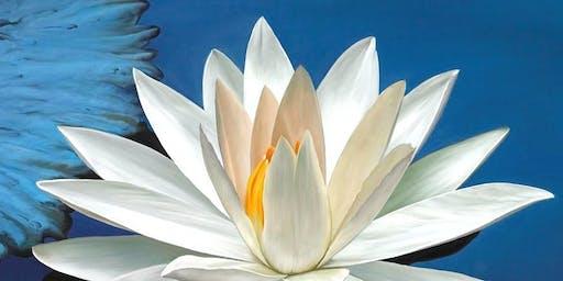 Diamond Heart Quantum Liberation - 2 Day Spiritual Immersion