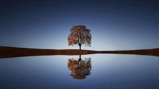 Personal Transformation through Meditation