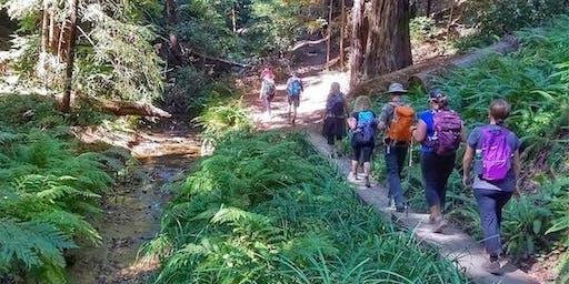 Bungalow Sunday Stroll: Redwood Regional Park