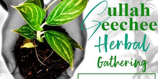 The First Gullah Geechee Herbal Gathering