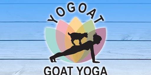 Living Fitness Goat Yoga