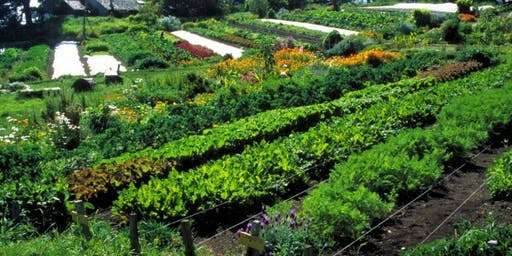 Permaculture Introduction Course