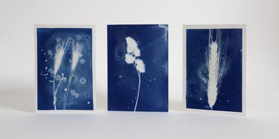 Winter Cyanotypes: Festive Card and Print Making