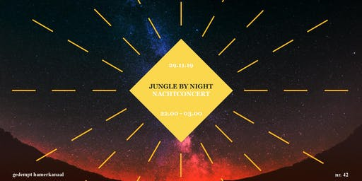 Jungle By Night - Nachtconcert