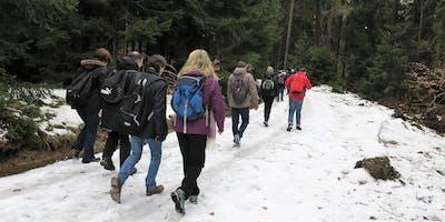 """Do,26.12.19 Wanderdate """"Single Wandern Goldgrube, Herzbergturm und Marmorstein für 30-49J"""""""