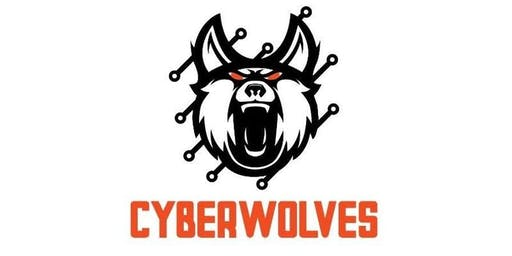 Cyber Wolves Academy