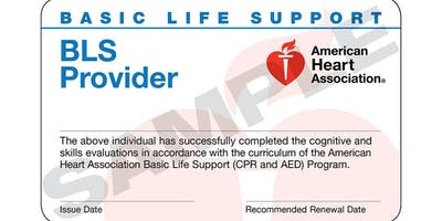 American Heart Association BLS Provider