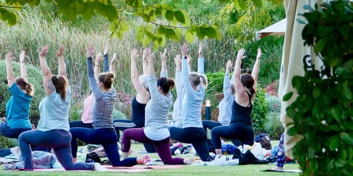 Yoga Unwined  @Golding Wines