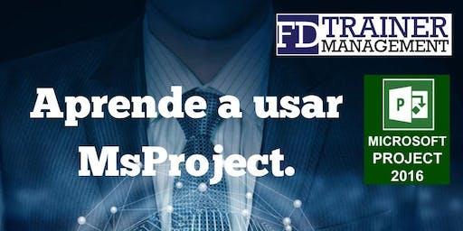 MasterClass MsProject Santo Domingo