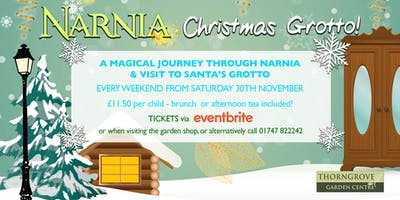 Narnia Christmas Grotto at Thorngrove Garden Centre