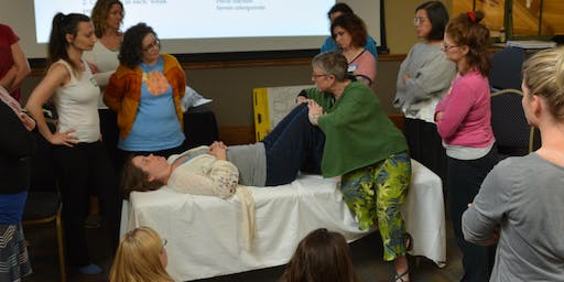 Integral Touch of Birth Workshop: March 4-7, 2020