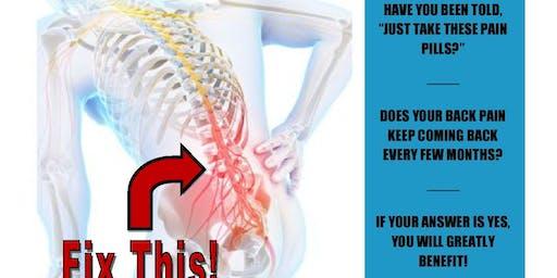 Back Pain Workshop!