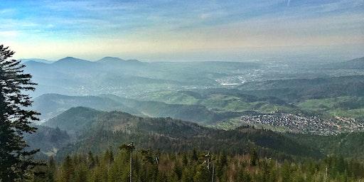 Single-Wanderung Rund um Bad Herrenalb (40+)
