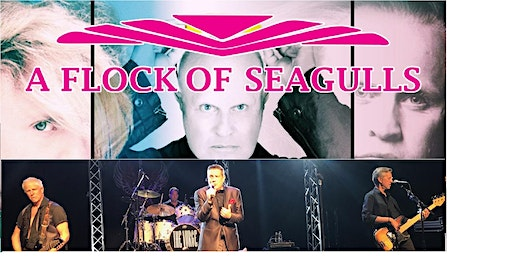 A FLOCK OF SEAGULLS with THE VURGE