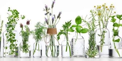 Esperienza olfattiva con gli olii essenziali